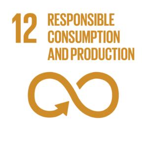 E_INVERTED SDG goals_icons-individual-RGB-12